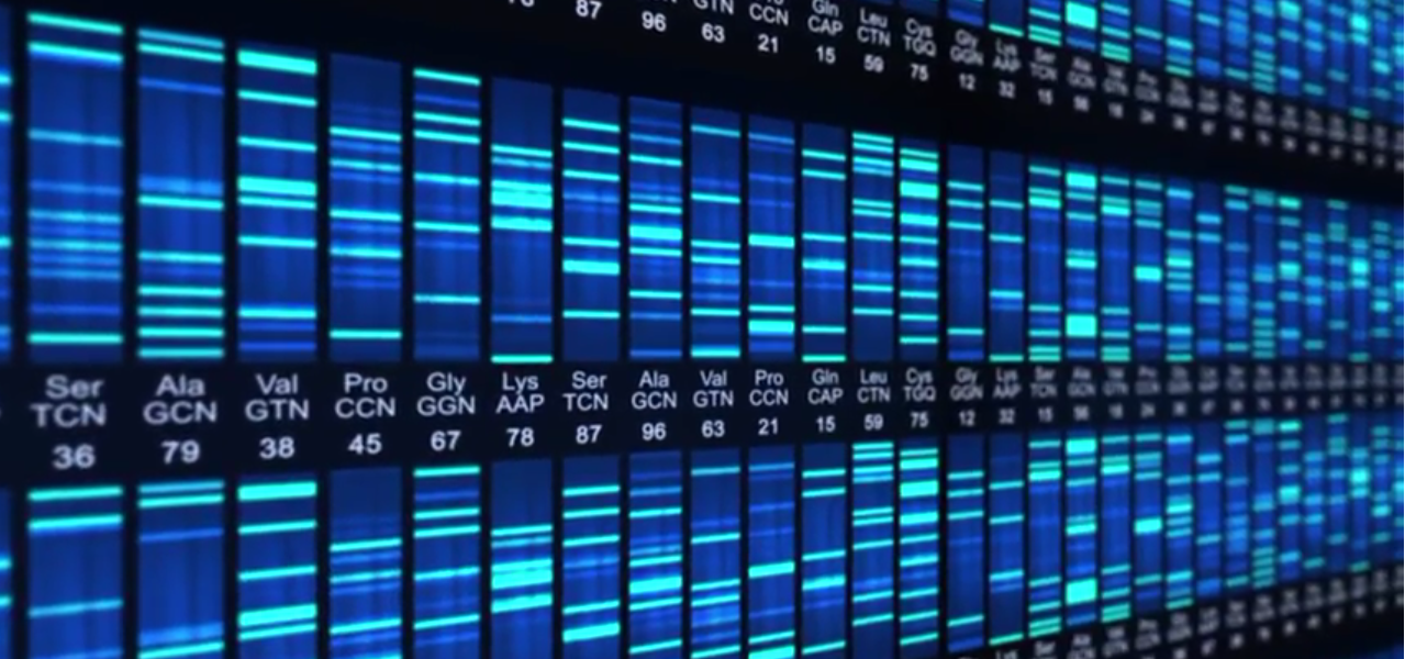 The lost genes of the Human Genome